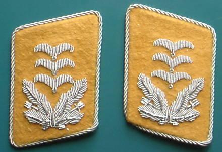 空軍大尉襟章