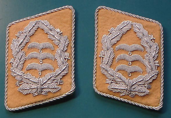 空軍大佐襟章