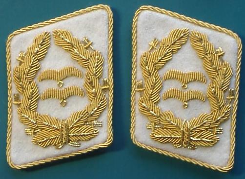 空軍中将襟章