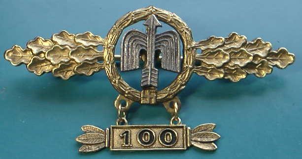 100回Lw昼間戦闘機章